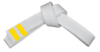 9 кю детский айкидо покровск энгельс